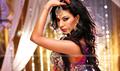 Picture 27 from the Hindi movie Gali Gali Chor Hai