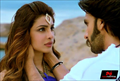 Picture 25 from the Hindi movie Gunday