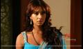 Picture 4 from the Telugu movie Jagan Nirdoshi
