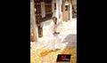 Picture 62 from the Tamil movie Kanna Laddu Thinna Aasaiya