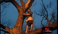 Picture 17 from the Tamil movie Kanna Laddu Thinna Aasaiya