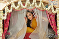 Picture 19 from the Telugu movie Rudhramadevi