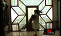 Picture 19 from the Tamil movie Shivani