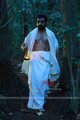 Picture 47 from the Malayalam movie Yakshi Faithfully Yours