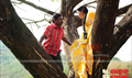 Picture 35 from the Malayalam movie No. 66 Madhura Bus