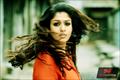 Picture 11 from the Telugu movie Anaamika