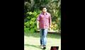 Picture 4 from the Telugu movie Dorakadu