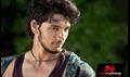 Picture 14 from the Telugu movie Kadali
