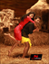 Picture 10 from the Kannada movie Love in Mandya