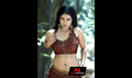 Picture 23 from the Telugu movie Mamatha