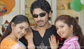 Picture 17 from the Telugu movie Mamatha