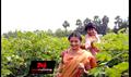 Picture 15 from the Telugu movie Manasuna Manasai