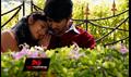 Picture 11 from the Telugu movie Manasuna Manasai