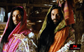 Picture 54 from the Hindi movie R... Rajkumar