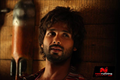 Picture 20 from the Hindi movie R... Rajkumar