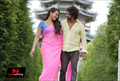 Picture 5 from the Hindi movie R... Rajkumar