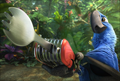 Picture 6 from the English movie Rio 2