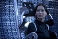 Picture 10 from the English movie The Hunger Games: Catching Fire