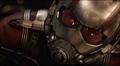 Picture 13 from the English movie Ant-Man