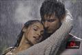 Picture 6 from the Telugu movie Chirunavvula Chirujallu