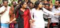 Picture 29 from the Malayalam movie Elanjikkavu P.O