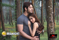 Picture 17 from the Hindi movie Midsummer Midnight Mumbai