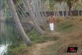 Picture 50 from the Malayalam movie Munnariyippu