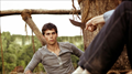 Picture 1 from the English movie The Maze Runner