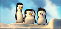 Picture 1 from the English movie Penguins of Madagascar