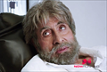 Picture 16 from the Hindi movie Shamitabh