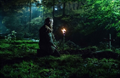 Picture 7 from the English movie The Last Witch Hunter