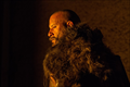 Picture 5 from the English movie The Last Witch Hunter