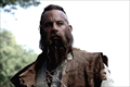 Picture 4 from the English movie The Last Witch Hunter