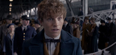 Fantastic Beasts And Where To Find Them Video