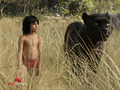 Picture 2 from the Hindi movie The Jungle book