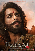 Picture 15 from the Hindi movie Padmaavat