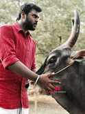 Picture 10 from the Tamil movie Madura Veeran