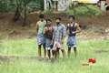 Picture 13 from the Tamil movie Nadodi Kanavu