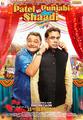 Picture 1 from the Hindi movie Patel Ki Punjabi Shaadi