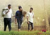 Picture 10 from the Telugu movie Agnathavasi