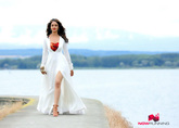 Picture 14 from the Kannada movie Tarak