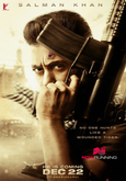 Picture 19 from the Hindi movie Tiger Zinda Hai