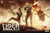 Picture 18 from the Hindi movie Tiger Zinda Hai