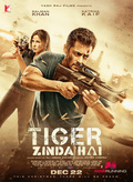 Picture 17 from the Hindi movie Tiger Zinda Hai